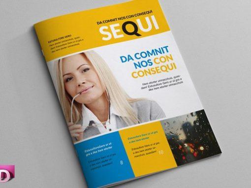 Revista Comercial Media Carta